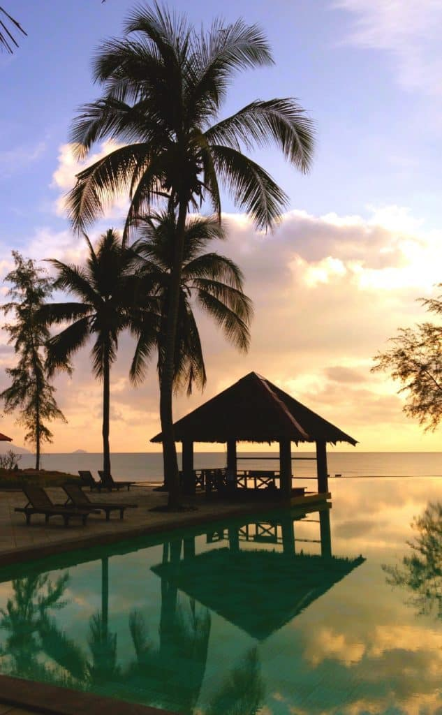 sunset with palm tree and bungalow