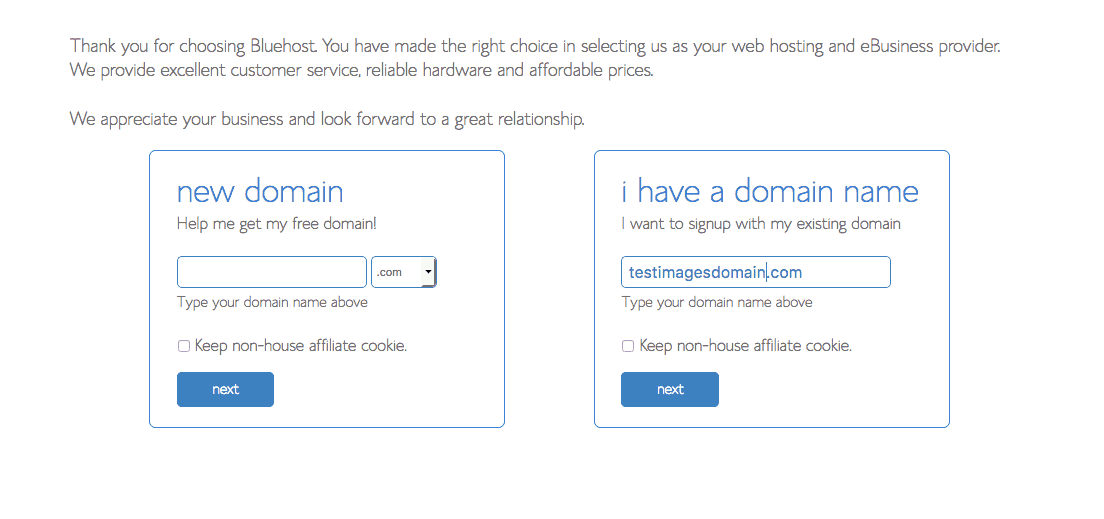 Bluehost visual of choosing your domain name