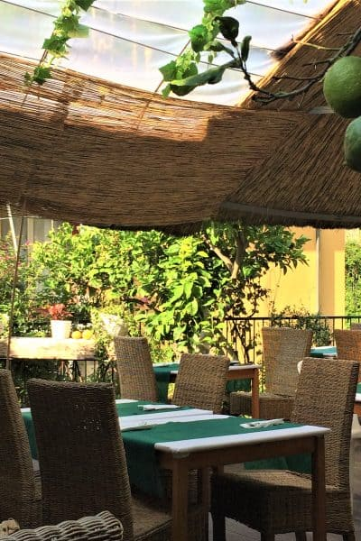 A sunny rooftop cafe in Italy with lemon trees and blue table cloths and thatched chairs