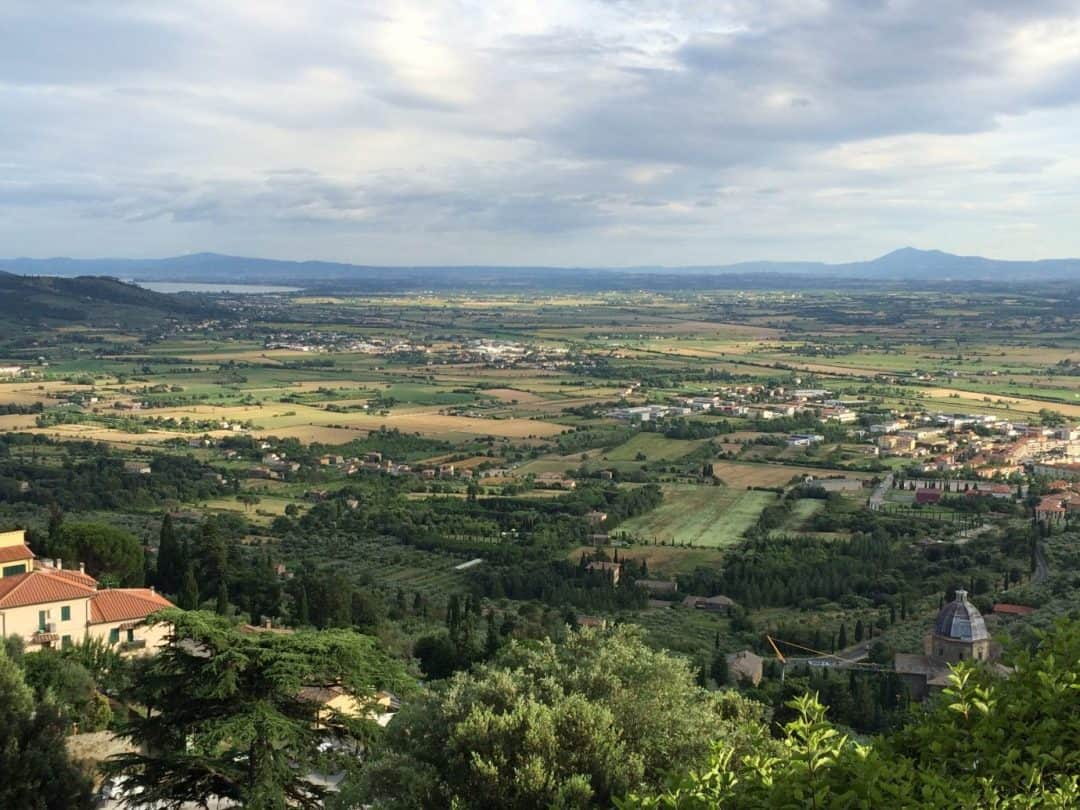 A sweeping landscape view of the vineyards and hillside from the top of Cortona, Italy