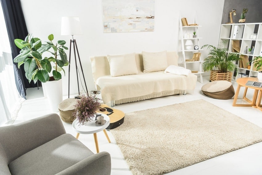 Declutter house in 30 days - decluttered warm tone living room with shaggy rug and neutral sofa and plant